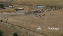Cattle Ranch Aussie Outback 1  Aerial 4398