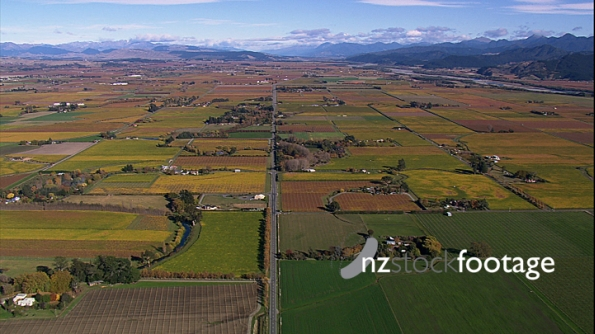 Farmland Fields Aerial 12 4195