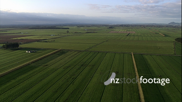 Farmland Fields Aerial 2 4186