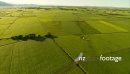 Farmland Fields New Zealand Aerial 4 4188
