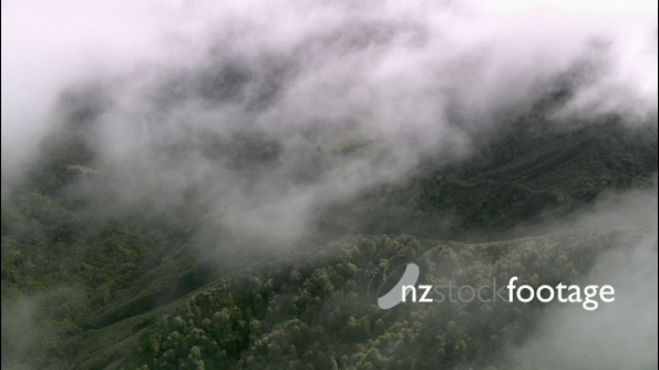 Misty Bush Covered Hills Aerial 1 24619