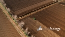 Potato Harvester Aerial 4 4143