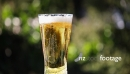 Beer Glass 1 3345