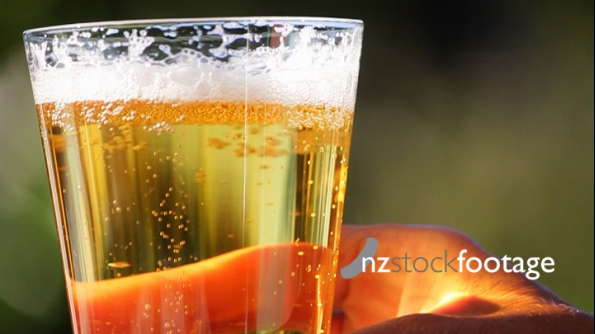 Beer Glass Pick Up 2 3352