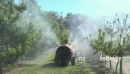 Sprayer in Orchard From Rear HD 1 24776