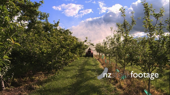 Spraying Pesticides Orchard 2 3587