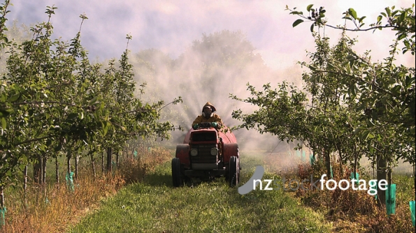 Spraying Pesticides Orchard 3 3588