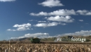 Maize Harvest Side 9 TIME LAPSE 1567