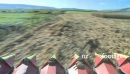 Maize Harvest POV 5 1570