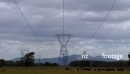 Power Lines & Dairy Cows 1 1164