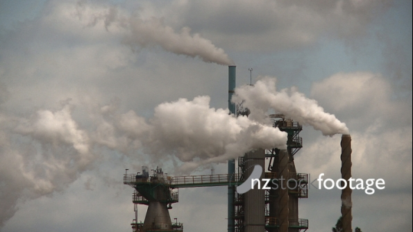 Pulp Mill Pollution 2 3095