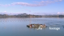 Whangaroa Oyster Farm Harvest Barges 1 24682