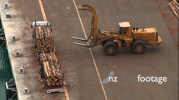 Logs taken off a Truck 3972
