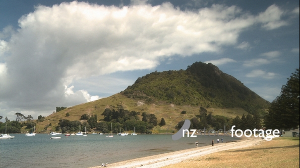 Mount Maunganui Beach New Zealand 3086