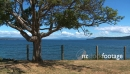 Lake Taupo Scenic 1015