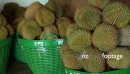 Fresh Durian at Market 2 2220