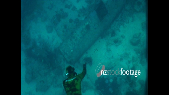 Bomber World War 2 Plane Underwater 3 1896
