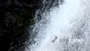 Waterfall Close Up 10 366