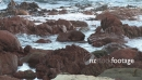 Red Rock Pools 1785
