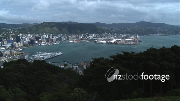 Wellington City New Zealand 1 1011