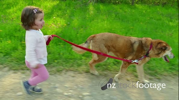 Child Children Little Girl Running With Animal Dog Pet Outdoors 15318