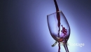 8 Glass Filled With Red Wine In Super Slowmotion 240p 18757