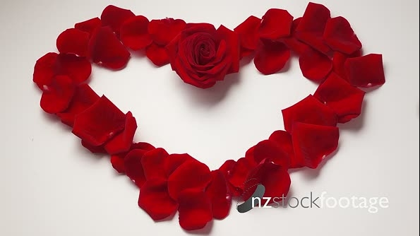 14 Valentine Day Heart Shape With Rose Petals Slowmotion 120p 18794