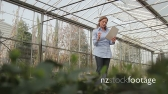 Female Scientist examining flora in a greenhouse 20515
