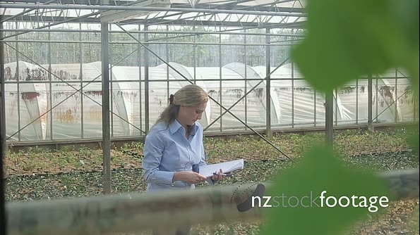 Scientist examining flora in a greenhouse 20555