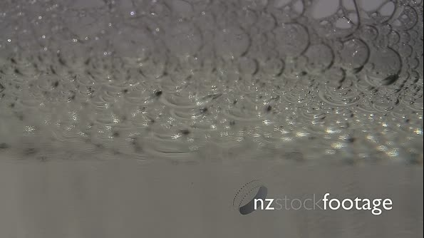 Abstract Water Drops, Bubbles, Macro 22574