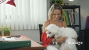 1-Business Woman Playing With Pet Dog In Office 25590