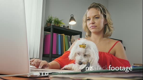 2-Business Woman Holding Dog During Skype Conference Call 25593
