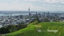 View of Auckland Downtown and Mount Eden Crater 25810