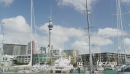 Viaduct Harbour Auckland Skytower in Foreground 25945