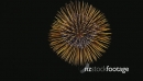 Japanese Fireworks Display 26594