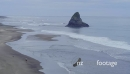 Aerial drone of man walking his dog on karekare beach, Auckland, New Zealand 26894