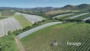Aerial flying over a vineyard on waiheke island, Auckland, New Zealand 27029