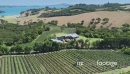 Aerial view flying over a vineyard at cable bay, waiheke island, Auckland, New Zealand 27044