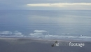Aerial drone over cliff reavealing karekare beach, Auckland, New Zealand 27529