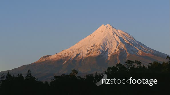 Mt Taranaki Birds flying  28105