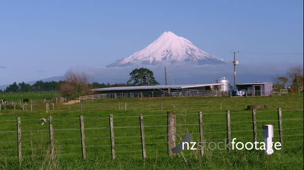 Mt Taranaki and Milking Shed  28110