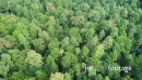 Top down aerial view over rain forest 2 28262