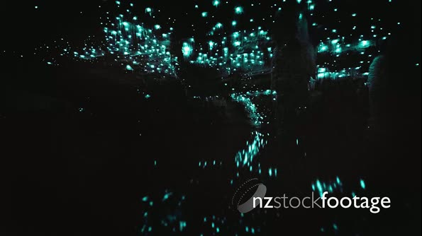 Colorful time-lapse of glow worms in cave over water 28282