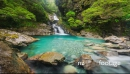 Turquoise coloured stream, Fiordland, New Zealand 28287