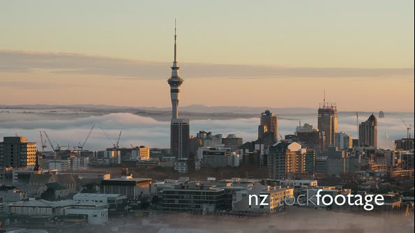 Morning sun hitting the Auckland Sky Tower 29036