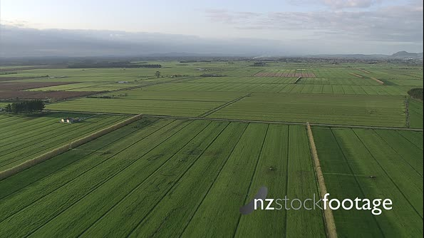 Farmland Fields Aerial 13 4196