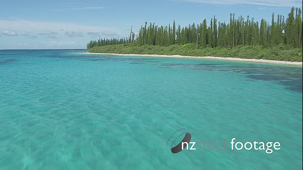New Caledonia Isle of Pines 2 4551