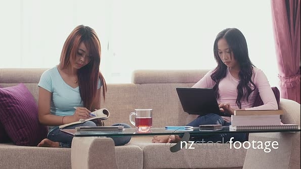 Asian Girls Studying With Book And Laptop Computer At Home 5210