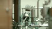 Man At Work In Pharmaceutical Lab 6289